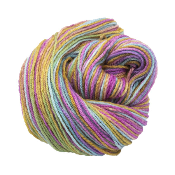 Shady Rainbow hand dyed skeins of DK Blue Faced Leicester wool