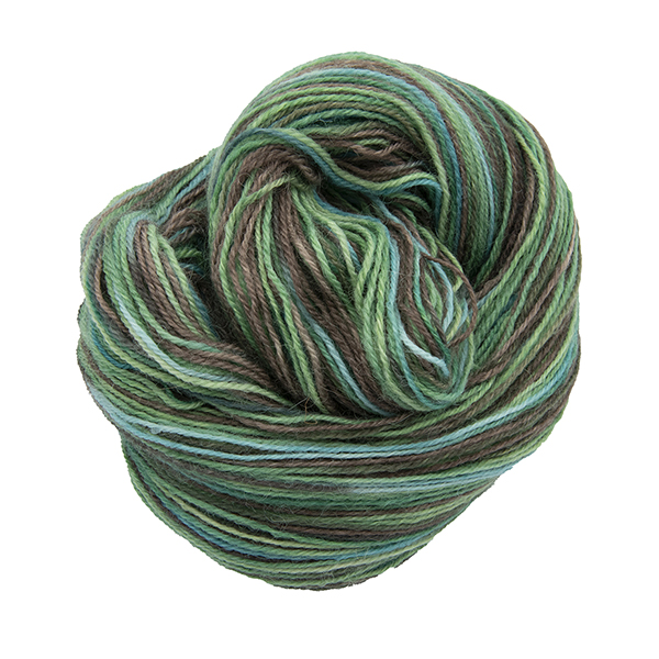 Skein of hand dyed yarn in walnut tree (greens and brown)