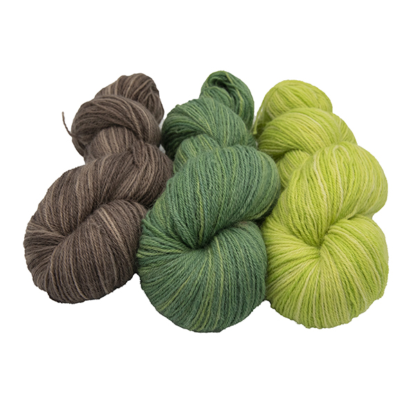 three skeins of hand dyed yarn in extra lime, chocolate and olive semi solid colours, arranged in a row